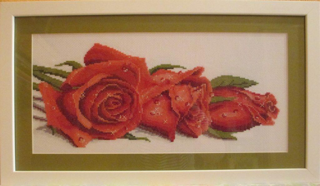 розы моя вышивка